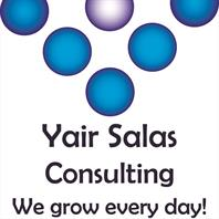 Yair Salas Consulting